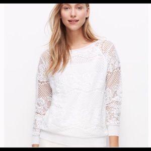 Ann Taylor white lace sweater